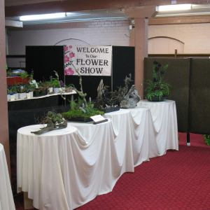 The Dunedin Horticultural Society Autumn Show