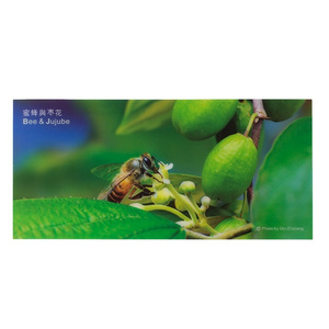 3D Bee Picture - Jujube (Feijoa)