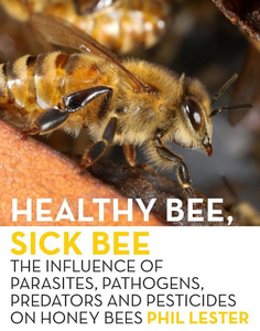 Healthy Bee, Sick Bee.